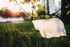 Agarose Gel Bioplastic