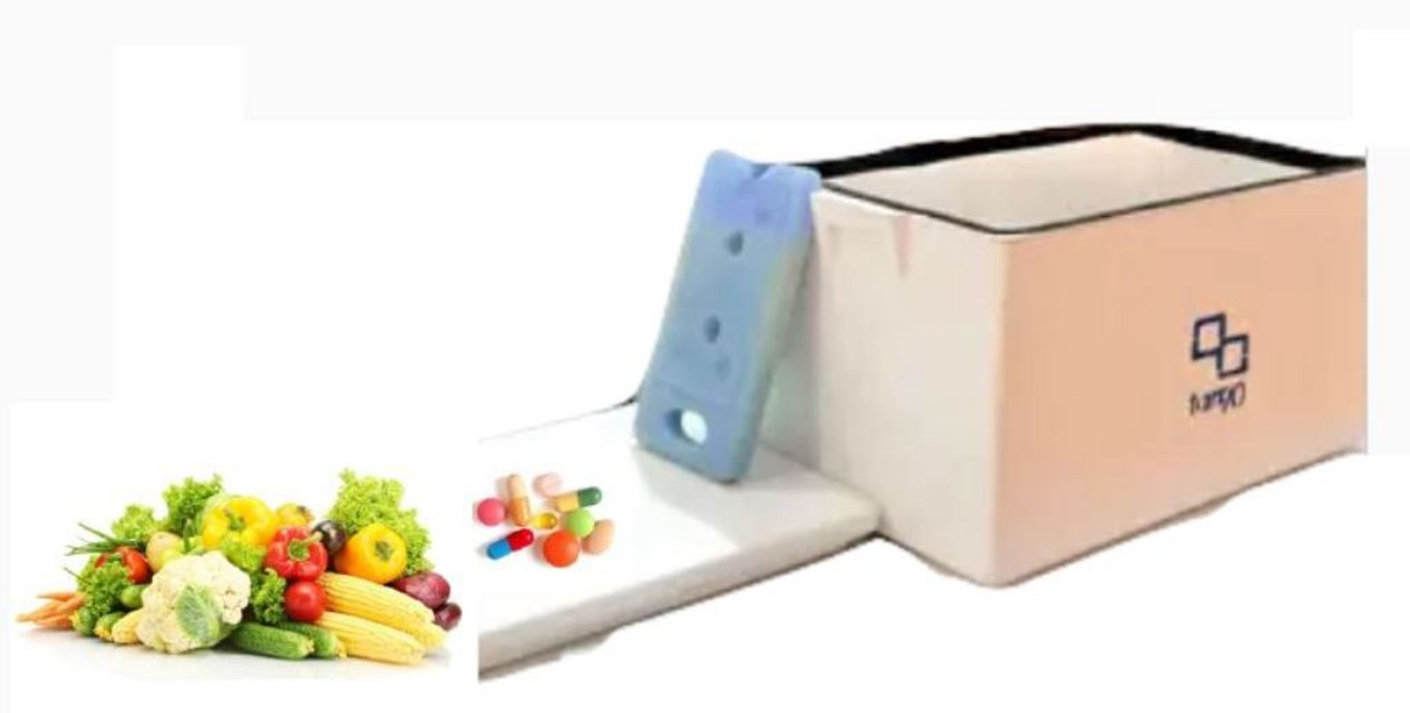 Portable Cold Storages